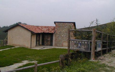 Serralunga d'Alba (CN) - Podere di Sorano
