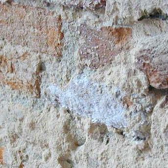 Soluzioni per murature degradate da sali ed umidità